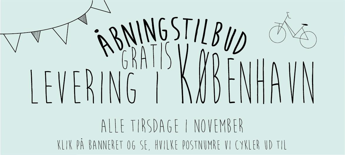 Copenhagencakeshop Banner gratis fragt tirsdag